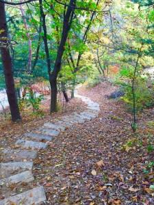 가을이 완연한 광릉추모공원
