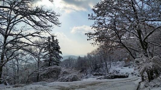 광릉추모공원의 겨울