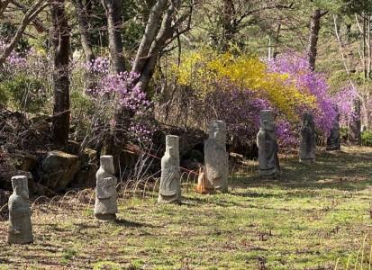 광릉추모공원의 봄