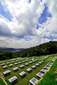 광릉추모공원 봉안묘