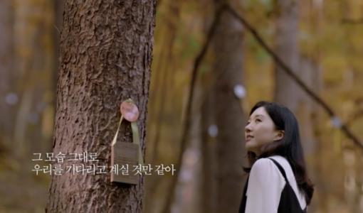 광릉추모공원 홍보(광고) 사진
