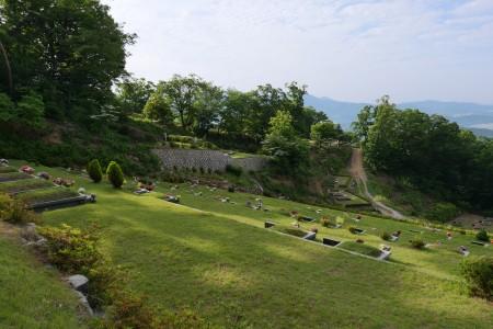 울창해지는 광릉추모공원